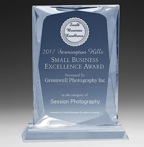 2017 Farmington Hills Small Business Excellence Award