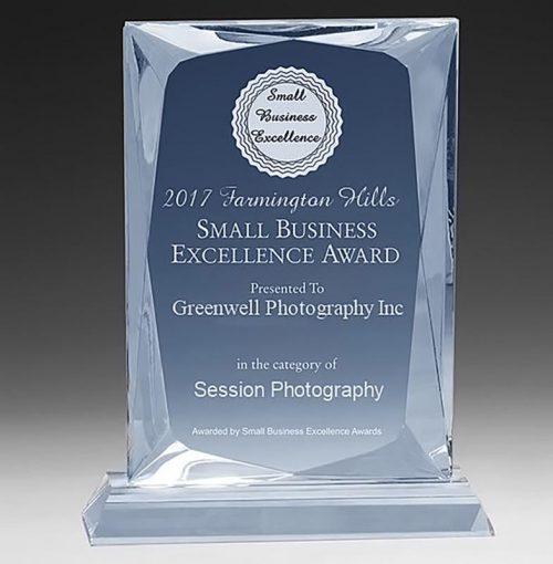 2017 Farmington Hills Small Business Excellence Award