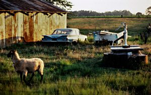 country scene old cars